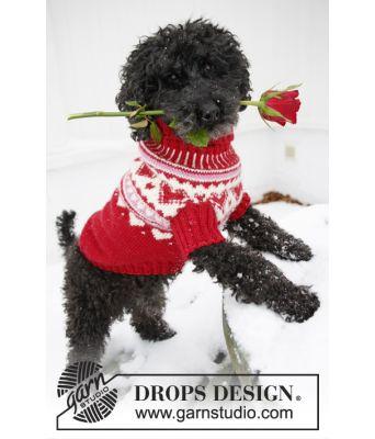 Valentino strikket hundegenser i varm ull - Drops 0-1010